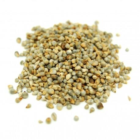 Graines de lin 100g bio et naturelles
