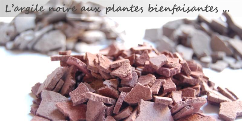 Les argiles au plantes